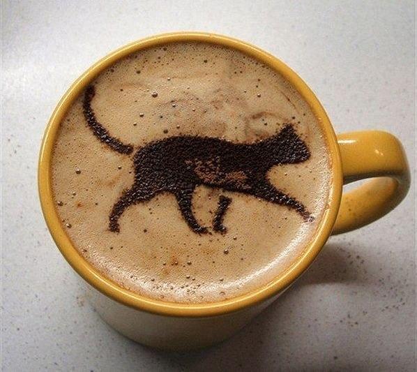 Кошка-пенка на кофе
