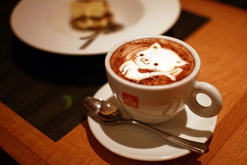 Пенка в кофе: Котёнок