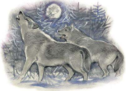 Два нарисованных волка