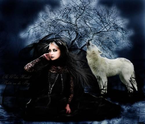 Картинка волк воет