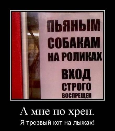 Фото приколы - Страница 4 207247154