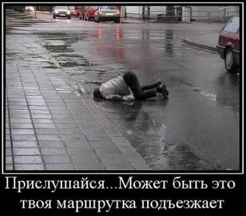 Фото приколы - Страница 4 71389199